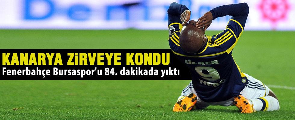 Fenerbahçe 1 - 0 Bursaspor
