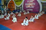 EĞLENCE FUARI - Wushu 23 Nisan Fuarında
