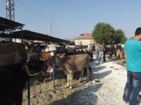 İsparta'da Kapatılan Hayvan Pazarı Kullanıma Açıldı