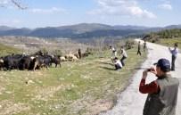SAGALASSOS - Güney Koreli Turist Hedefine Yönelik Tanıtım