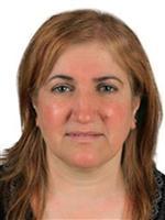 İlçe Nüfus Müdürü Kazada Öldü