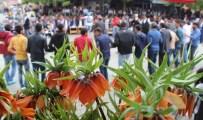 Arıcak'ta Ters Lale Şenliği Düzenlendi