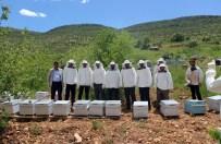 Savur'da 'Arıcılık Projesi'