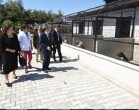 Başkan Uğur Sokak Hayvanları Geçici Bakımevinde İncelemelerde Bulundu