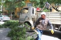Rüzgar Nedeniyle Kırılan Ağaç Dalı Yolu Kapattı