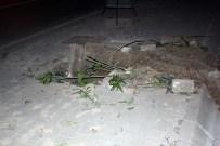 CAHAR DUDAYEV - İzmir'de Tramvay Hattı İçin Yüzlerce Ağaç Kesildi