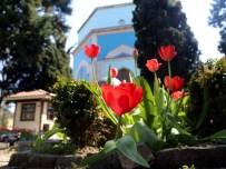 VAZELON MANASTıRı - Türkiye'nin Turist Haritası (2)