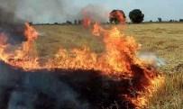 Adana'da Korkutan Anız Yangını