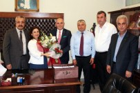 MUHARREM VARLI - MHP Adana Milletvekilleri Mazbatalarını Aldı