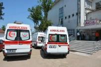 GEYIKÇELI - Kumru'da Ağaçtan Düşen Kişi Yaralandı