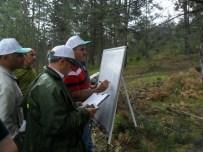 SAĞLIK KARNESİ - Ormanlara Sağlık Karnesi