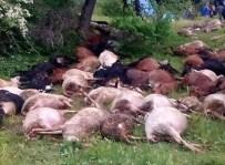 YASSıÖREN - Dursunbey'de Yıldırım 45 Küçükbaş Hayvanı Daha Telef Etti