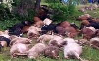 YASSıÖREN - Yine Yıldırım Faciası Açıklaması 45 Hayvan Telef Oldu