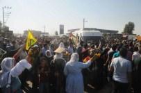 CENAZE ARABASI - YPG Ve Ypj'lilerin Cenazeleri Cizre'de Defnedildi