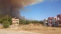 MERSIN - Mersin'de orman yangını