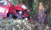 APDIPAŞA - Kontrolden Çıkan Otomobil, Ağaca Çarptı Açıklaması 1 Yaralı