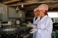 HIYEROGLIF - Türkiye'nin Bütün Kuşkonmaz İhtiyacını Karşılıyor