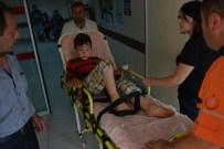 Yılanın Isırdığı Çocuk Tedavi Altına Alındı