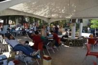 ALI ERDOĞAN - Besni'de Kızılay Kan Bağışlarını Topladı