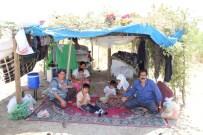 KİRA BORCU - Barakada Kalan Aileye Sason Der'den Yardım
