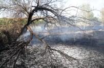 KÖY MEZARLIĞI - Van'da Mezarlık, Ağaç Ve Ot Yangını'