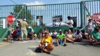 HIROŞIMA VE NAGAZAKI - Nükleer Karşıtı Eyleme Arı Engeli