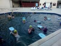 Emetliler Yüzme Öğreniyor