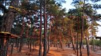SURVİVOR - Macera Parkı'nın İnşasında Sona Gelindi