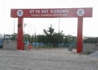 ET VE BALıK KURUMU - Yozgat Esk'nın Süt Kombinası Çürümeye Bırakıldı