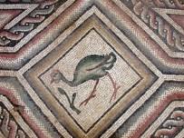 KOMMAGENE - Kapatılan Mozaik Gün Yüzüne Çıkacak