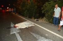 Balıkesir'de Otomobilin Çarptığı Kadın Öldü