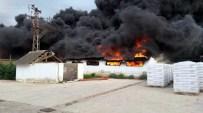 YANGIN PANİĞİ - Ambalaj Fabrikasındaki Yangın Korkuttu
