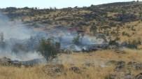 Çüngüş'te Korkutan Orman Yangını