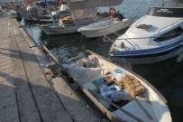 ÖLÜM RAPORU - Ölüm Denizde Geldi