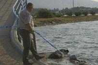 BARIŞ MANÇO - İzmir'de Denize Giren Çocuk Boğuldu