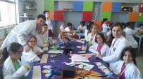 SURVİVOR - Btm'de Günlük Yaz Kampları Başladı