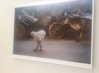 NATIONAL GEOGRAPHIC - Dünyaca Ünlü Fotoğraf Sanatçısı Steve Mccurry Ankara'da
