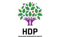 ETHEM SARISÜLÜK - HDP'de Ethem Sarısülük'ün ağabeyi aday oldu