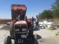 KARA DENİZ - Ergani'de Ayçiçeği Alımları Başladı