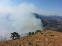 Derebuuk'ta Orman Yangını