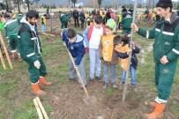 FİDAN DİKİM TÖRENİ - Büyükşehir Ve TEMA İşbirliğiyle Öğrenciler Fidan Dikti