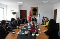 CENGİZ YAVİLİOĞLU - Tügiad Ankara Şube'den Maliye Bakanlığı'na Ziyaret
