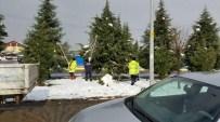 Kartepe'de Ağaçlar Kardan Korunuyor