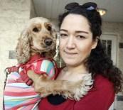 HUKUK SAVAŞI - Kiraz Köpeğin Hukuk Zaferi