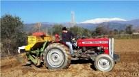 SERA ETKISI - Patateste Üreticinin Umudu Bahara Kaldı