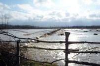 Sinop'ta Tarım Arazileri Sular Altında Kaldı