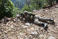 GÜVENLİK GÜÇLERİ - Giresun'da PKK'ya Yönelik Operasyon Sürüyor