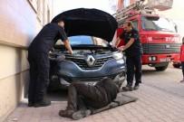 İTFAİYE ERİ - Soğuktan Üşüyen Yavru Kedi, Sığınak Olarak Araba Motorlarını Seçti