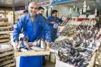 ALABALIK - Ankaralılar, 1 Ayda 607 Ton Palamut Tüketti
