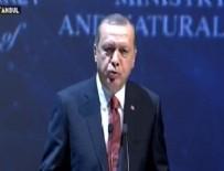 NÜKLEER ENERJI - Cumhurbaşkanı Erdoğan Enerji Kongresi'nde konuştu